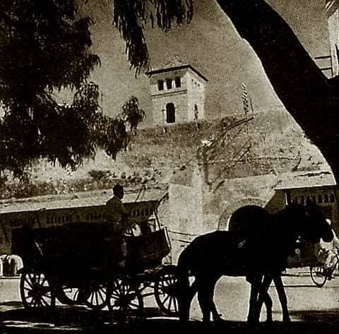 Les calèches d'El-Jadida: nostalgie d'un passé récent.