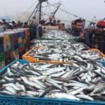 L'interdiction de l'accès au public du port d'El-jadida entre accueil favorable et désapprobation