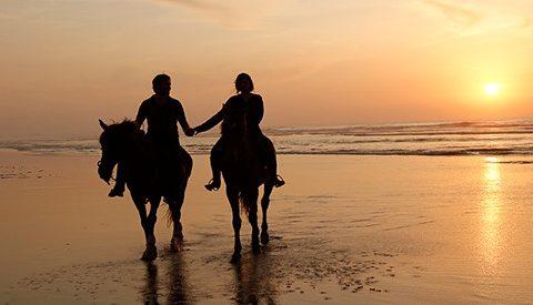Cette rentrée, faite le plein d'activités à Mazagan Beach & Golf Resort.