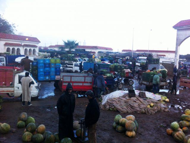 Coronavirus-Marché de gros d'El-Jadida : 27 personnes, réparties entre fonctionnaires et  gérants de magasins de fruits…,testées négatives